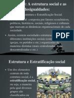 Estrutura e Estratificac3a7c3a3o Social