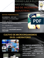 MICRO PORTAFOLIO 2parcial.pptx