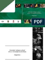 2007 Diagnostico Biodiversidad Sur de La Amazonia