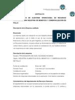 Modelo Papeles de Trabajo Auditoria Operacional