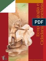 Livro - Ecopedagogia e cidadania planetária