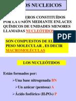 ACIDOS NUCLEICOS(1)
