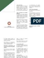 Cartilla derechos de pueblos indígenas.docx