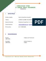 Curriculum Vitae - Narciso Daniel Bravo - 2013