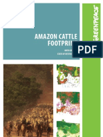 Amazon Cattle Footprint