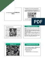 Ecologia Da Microflora Oral_2009