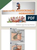 1 sistemaendocrino-PPT