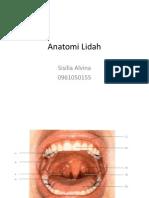 87961564-Anatomi-Lidah