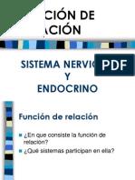 Unidad 8. Sistema Nervioso y Endocrino