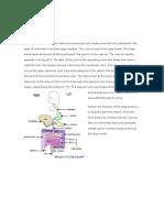 Adeno Carcinoma-Lanuza Karla Bernadine