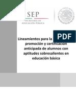 Lineamientos_acreditacion_promo.pdf