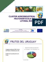 Cluster Agroindustrial Uruguay