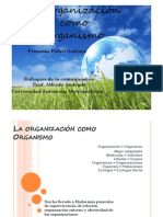 OrganizaciónlikeOrganismo
