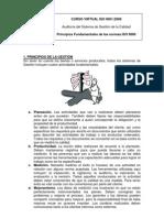 Principios de La Norma ISO 9000