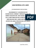 mejoramiento y contruccion de pavimentacion, veredas y drenaje pluvial - perfil.pdf