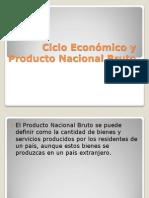 Ciclo Economico y Producto Nacional Bruto EXPO (1)
