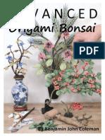 Advanced Origami Bonsai Preview