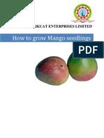 Mango How To