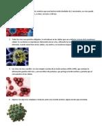 Caracteristicas Virus