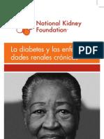 11-10-0242 AAI PatBro DiabetesCKD 1-4 Pharmanet NKF SPAN Jan08