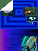 Fish- Leah and HanPPnah