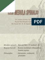 Lesi Medula Spinalis