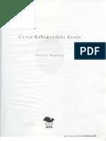 stephen_hawking_ceviz_kabugundaki_evren.pdf