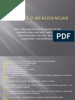 5 VÍSCERAS O MENUDENCIAS.ppsx