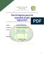1 Plan de Negocios Melocito