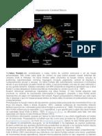 Mapeamento Cerebral Básico