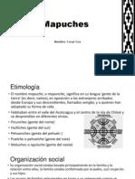 Mapuche s