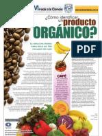 Identificar Orgánico UNAM