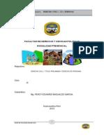 Material Derecho Personas Percy Basualdo