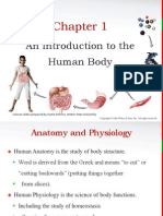 Principles of Anatomy and Physiology Chapter 1 (PPT)