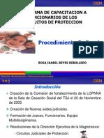 procedimiento_ordinario-lopna