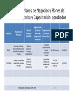 Estado de situación PRODERI JUL2013.pptx