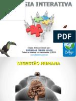 sistema_digestório