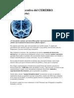 Manual Operativo Del CEREBRO III