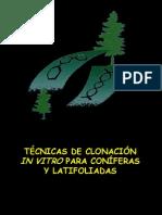 PPT clonación coniferas Latifoliadas