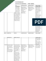Plan Operativo Anual Excel 2009