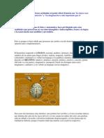 actividades hemisferios cerebrales