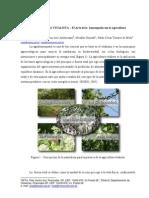 AGRICULTURA_VITALISTA.pdf