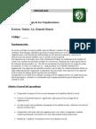 B Programa de Soc de Las Org UES21