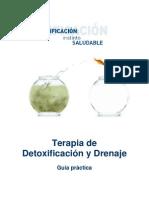 YO_Dossier detoxificacion-hell.pdf