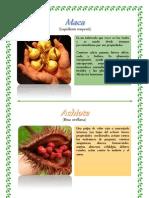 Album Plantas Nativas Del Peru