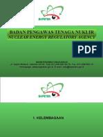 Ansn Ind PDF Kelembagaan Bapeten