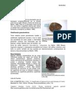 Roca Volcanica y Roca Bomba- David Garate Lopez- Geomorfologia
