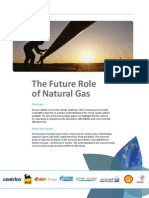 The Future Role of Natural Gas_EGAF_highlights