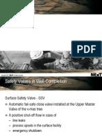 17 Safety Valves