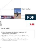 LiquidLoad.pdf